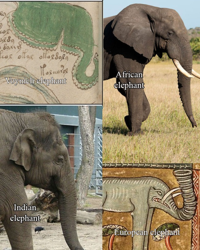 [Image: elephants4.jpg?w=676]